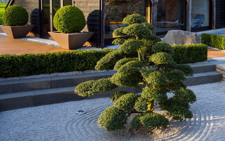 Ogród w stylu japońskim; Amir Schlezinger /